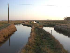 Route across the marsh